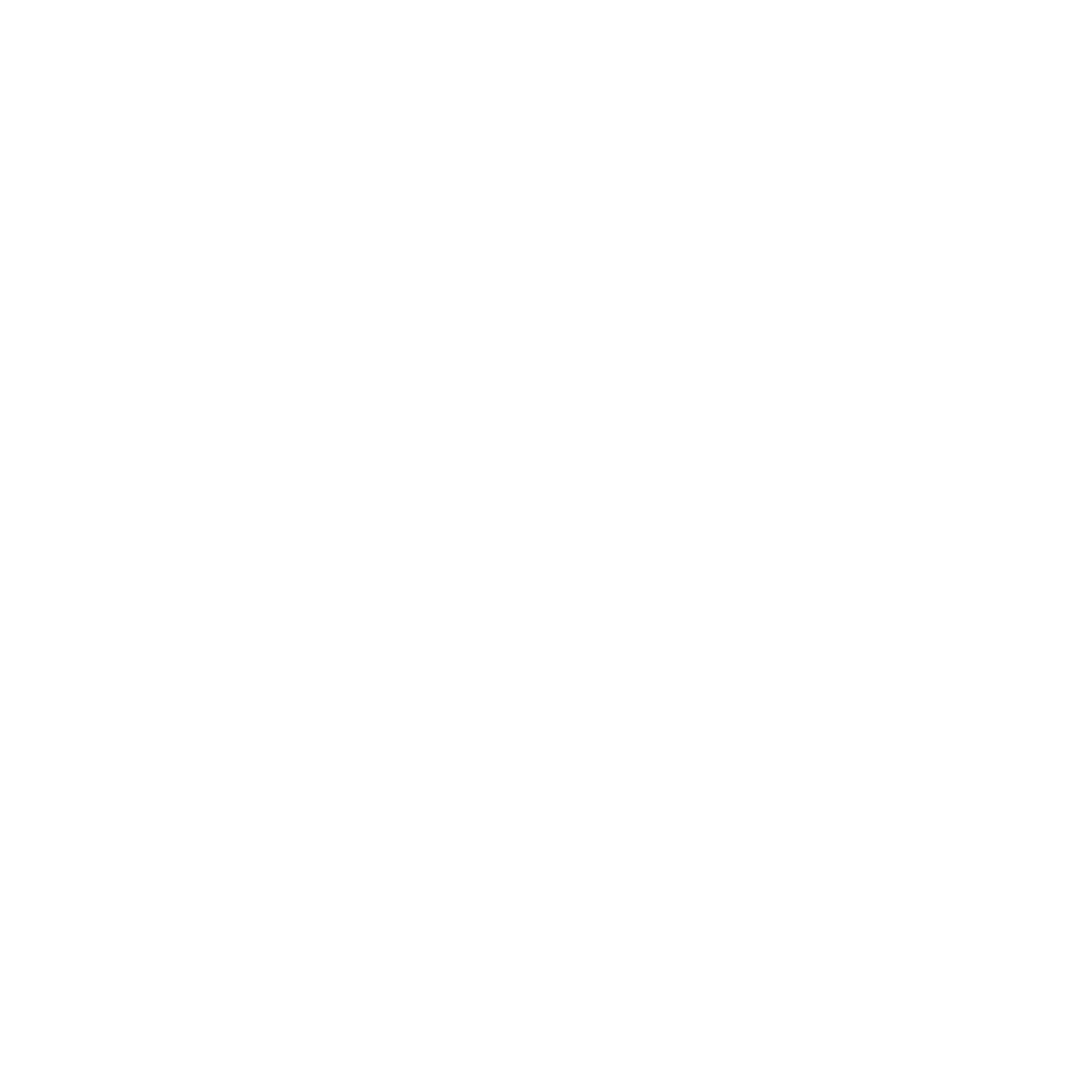 BMW-1.png